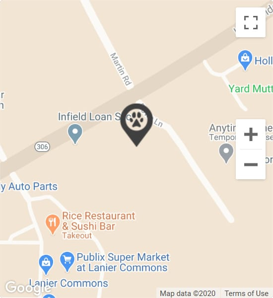 Google Map image of NFAH, 3510 Rowe Ln Suite B, Cumming, GA 30041
