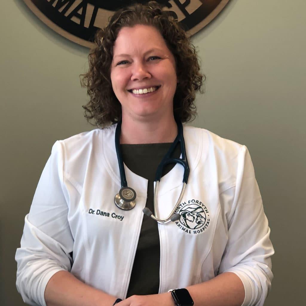Profile image of Owner & Medical Director Dana Croy at North Forsyth Animal Hospital in Cumming GA